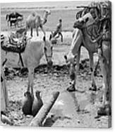 Middle East: Water, C1932 Canvas Print