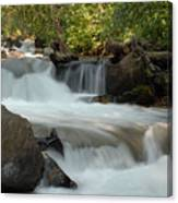 Middle Provo River Cascade Canvas Print