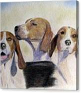 Middleburg Hounds Canvas Print