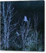 Midnight Flight Silhouette Blue Canvas Print