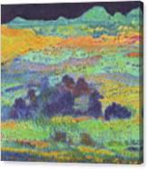 Midnight Prairie Dream Canvas Print