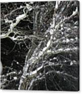 Midnight Snow 13 Canvas Print