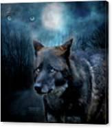 Midnight Spirit Canvas Print