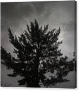 Midnight Storm Canvas Print
