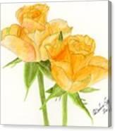 Midsummer Roses Canvas Print