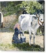 Milking, 19th Century Canvas Print