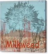 Milkweed Collage Canvas Print