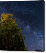 Milky Way Over The Forest At The Troodos Mountains In Cyprus. Canvas Print