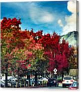 Mill Valley Autumn Canvas Print