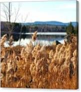 Millinocket Lake Canvas Print