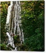 Mingo Falls - Gsmnp Canvas Print