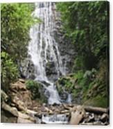 Mingo Falls In North Carolina Canvas Print