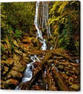 Mingus Falls Canvas Print