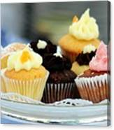Mini Cupcakes 7813 Canvas Print