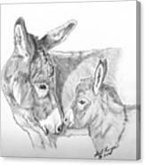 Mini Donkey Mom And Baby Canvas Print
