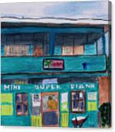 Mini Super Diana Canvas Print