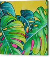 Mini Tropicals 3 Canvas Print