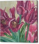 Mini-Tulip Bouquet - 8 Canvas Print