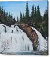 Mink Falls Canvas Print