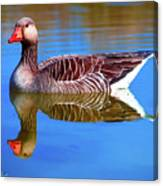 Mirror Goose Canvas Print