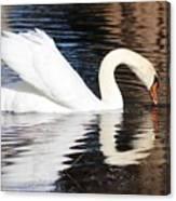 Mirror Image Canvas Print