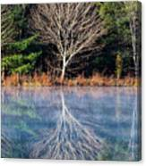Mirror Mirror On The Pond Canvas Print