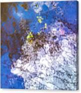 Mirror The Sky Canvas Print