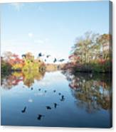 Mirrored Formation Canvas Print