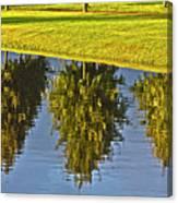 Mirroring Trees Canvas Print