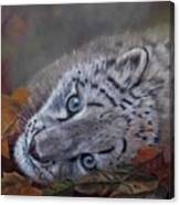 Mirucha In Fall Canvas Print