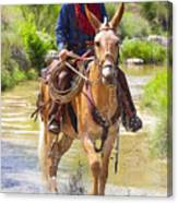 Miss Aleto And The Cowboy Iv Canvas Print