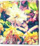 Mission Plants Canvas Print