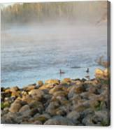 Mississippi River Duck Duck Dawn Canvas Print