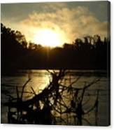 Mississippi River Sunrise Tree Roots Canvas Print