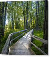 Mississippi Riverwalk Trail - Carleton Place, Ontario Canvas Print