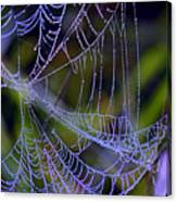 Mist In The Web  Canvas Print