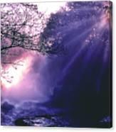 Mist Of Ireland Canvas Print