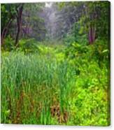 Mist On The Meadow  Canvas Print