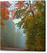 Misty Autumn Road Canvas Print