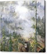 MIsty Forest with Mule Deer Canvas Print