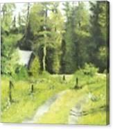 Misty Greens Canvas Print