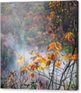 Misty Maple Canvas Print