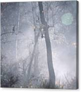 Misty Morning - Ojai California Canvas Print
