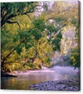 Misty Morning On Nariel Creek Canvas Print