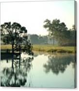 Misty Morning Pond Canvas Print