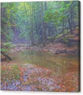 Misty Morning Woodscape Two Canvas Print