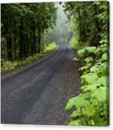 Misty Mountain Road Canvas Print