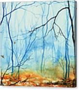 Misty November Woods Canvas Print