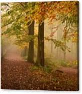 Misty Pathways  Canvas Print