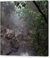 Misty Rainforest El Yunque Mirror Image Canvas Print